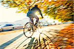 Man riding bicycle Stock Photo - Premium Royalty-Free, Artist: Photocuisine, Code: 698-05956333