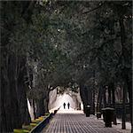 People walking in avenue Stock Photo - Premium Royalty-Free, Artist: Andrew Kolb, Code: 698-05958199