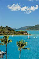 queensland - Shutehaven Harbour, Whitsunday Islands, Queensland, Australia, Pacific Stock Photo - Premium Rights-Managednull, Code: 841-05960871