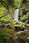 Hopetoun Falls, Great Otway National Park, Victoria, Australia, Pacific Stock Photo - Premium Rights-Managed, Artist: Robert Harding Images, Code: 841-05960889