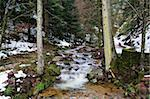 Allerheiligen Falls, Allerheiligen, Black Forest, Baden-Wurttemberg, Germany, Europe Stock Photo - Premium Rights-Managed, Artist: Robert Harding Images, Code: 841-05960892