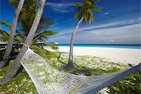 Hammock and tropical beach, Maldives, Indian Ocean, Asia Stock Photo - Premium Rights-Managednull, Code: 841-05961987
