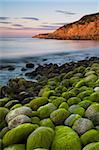 Algae covered rocks at sunrise at Church Ope Cove, Portland, Jurassic Coast, UNESCO World Heritage Site, Dorset, England, United Kingdom, Europe Stock Photo - Premium Rights-Managed, Artist: Robert Harding Images, Code: 841-05962038