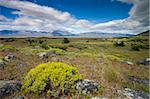 Summer on the Patagonian Steppe near El Calafate, Patagonia, Argentina, South America Stock Photo - Premium Rights-Managed, Artist: Robert Harding Images, Code: 841-05962384