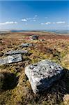 Granite outcrops near Grimspound, Dartmoor, Devon, England, United Kingdom, Europe Stock Photo - Premium Rights-Managed, Artist: Robert Harding Images, Code: 841-05962551
