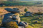 Granite outcrops on Hayne Down in Dartmoor National Park, Devon, England, United Kingdom, Europe Stock Photo - Premium Rights-Managed, Artist: Robert Harding Images, Code: 841-05962555