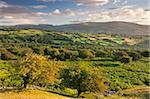 Moorland, rolling fields and Black Mountains of the Brecon Beacons, Powys, Wales, United Kingdom, Europe Stock Photo - Premium Rights-Managed, Artist: Robert Harding Images, Code: 841-05962589