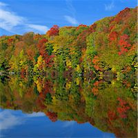 fall trees lake - Autumn trees reflected in still lake Stock Photo - Premium Royalty-Freenull, Code: 635-05972852