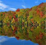 Autumn trees reflected in still lake Stock Photo - Premium Royalty-Freenull, Code: 635-05972852