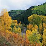 Autumn trees and hills in rural landscape Stock Photo - Premium Royalty-Freenull, Code: 635-05972874