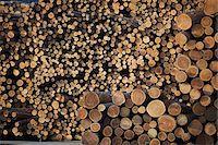 Logs, Merritt, Nicola Country, British Columbia, Canada Stock Photo - Premium Royalty-Freenull, Code: 600-05973356