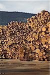 Logs, Merritt, Nicola Country, British Columbia, Canada