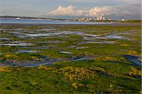 Late afternoon light illuminates the downtown Anchorage skyline and coastal mudflats along Knik Arm after a thunderstorm, Summer, Southcentral Alaska Stock Photo - Premium Rights-Managednull, Code: 854-05974334
