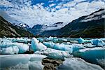 Scenic of icebergs from McBride Glacier in Muir Inlet, Glacier Bay National Park & Preserve, Southeast Alaska, Summer Stock Photo - Premium Rights-Managed, Artist: AlaskaStock, Code: 854-05974534