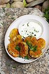 Traditional African cooking. Fish cakes - frikkadels with wasabi tartare sauce Stock Photo - Premium Royalty-Free, Artist: Aflo Relax, Code: 682-05977623