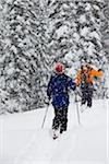 Couple backcountry skiing in snowstorm Stock Photo - Premium Royalty-Freenull, Code: 6106-05978086