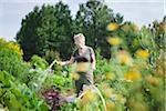 Active senior woman watering plants in back yard Stock Photo - Premium Royalty-Free, Artist: Masterfile, Code: 698-05980519