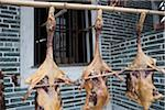 Drying geese at the courtyard of a house at Jinjiangli village, Kaiping, Guangdong Province, China Stock Photo - Premium Rights-Managed, Artist: Oriental Touch, Code: 855-05981911