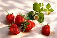 strawberries - Strawberries Stock Photo - Premium Rights-Managednull, Code: 825-05985232