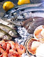sole - Selection of seafood with scallops, trout and mackerel Stock Photo - Premium Rights-Managednull, Code: 825-05986046