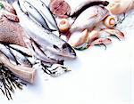 assorted raw fish Stock Photo - Premium Rights-Managed, Artist: Photocuisine, Code: 825-05986608