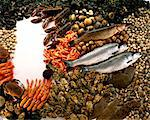 selection of sea food, fish and shellfish Stock Photo - Premium Rights-Managed, Artist: Photocuisine, Code: 825-05987168