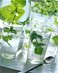 fresh mint in water Stock Photo - Premium Rights-Managed, Artist: Photocuisine, Code: 825-05987343