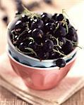 Blackcurrants Stock Photo - Premium Rights-Managed, Artist: Photocuisine, Code: 825-05988803