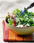 spicy beef salad with herbs Stock Photo - Premium Rights-Managed, Artist: Photocuisine, Code: 825-05989880