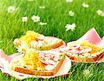 Fresh goat cheese open sandwich Stock Photo - Premium Rights-Managed, Artist: Photocuisine, Code: 825-05991036
