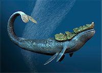 prehistoric - Leviathan sea monster, computer artwork. Stock Photo - Premium Royalty-Freenull, Code: 679-05996214