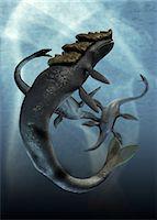 prehistoric - Leviathan and plesiosaur, computer artwork. Stock Photo - Premium Royalty-Freenull, Code: 679-05996215