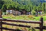 Dewachen Hotel, encircled by pine forests in the Phobjika Valley. Stock Photo - Premium Rights-Managed, Artist: AWL Images, Code: 862-05996961