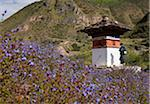A chorten surrounded by flowers at Tamchhog Lhakhang, a monastery built in the 14th century by Dewa Zangpo, son of Thangtong Gyalpo. Stock Photo - Premium Rights-Managed, Artist: AWL Images, Code: 862-05997057