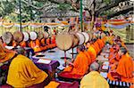 Tibetan monks in Bodhgaya, praying under the sacred Buddha banyan tree. It was here that the Buddha had the enlightenment. India Stock Photo - Premium Rights-Managed, Artist: AWL Images, Code: 862-05997871