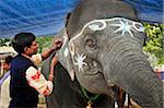 Elephant painter. Sonepur Mela, India Stock Photo - Premium Rights-Managed, Artist: AWL Images, Code: 862-05997889