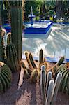 Jardin Majorelle, The Majorelle Garden is a botanical garden in Marrakech, Morocco. Stock Photo - Premium Rights-Managed, Artist: AWL Images, Code: 862-05998663