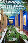 Jardin Majorelle, The Majorelle Garden is a botanical garden in Marrakech, Morocco. Stock Photo - Premium Rights-Managed, Artist: AWL Images, Code: 862-05998666