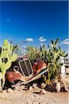 Namibia, Khomas Region, Solitaire. A rusty old Morris Eight car lays abandoned at a petrol station. Stock Photo - Premium Rights-Managed, Artist: AWL Images, Code: 862-05998711