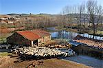 Rural scene in Gimonde. Montesinho Natural Park, Portugal Stock Photo - Premium Rights-Managed, Artist: AWL Images, Code: 862-05998948