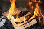 Books burning in fire Stock Photo - Premium Royalty-Free, Artist: TSUYOI, Code: 649-06000722