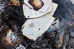Books burning in fire Stock Photo - Premium Royalty-Free, Artist: Ikon Images, Code: 649-06000724