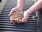 Hands holding pile of wood chips Stock Photo - Premium Royalty-Free, Artist: Anthony Redpath, Code: 649-06001466