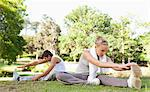 Young sportspeople doing stretches on the lawn Stock Photo - Premium Royalty-Free, Artist: Aflo Relax, Code: 6109-06004559