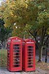 Red telephone boxes, Hampstead