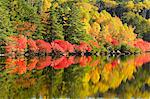 Reflection Of Autumn Trees In Lake Stock Photo - Premium Royalty-Free, Artist: Jean-Yves Bruel, Code: 622-06009913
