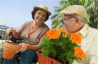 Senior couple gardening Stock Photo - Premium Royalty-Freenull, Code: 693-06014335