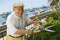 Senior man clipping hedge Stock Photo - Premium Royalty-Freenull, Code: 693-06014341