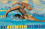 Swimmers Racing Stock Photo - Premium Royalty-Free, Artist: Minden Pictures, Code: 693-06014660