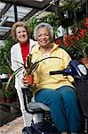 Two senior women in garden center Stock Photo - Premium Royalty-Free, Artist: Susan Findlay, Code: 693-06019430